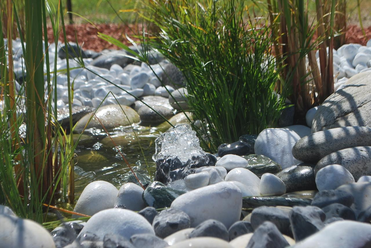 Fontaine et jeux d'eau, décor minérl, végétal et aquatique