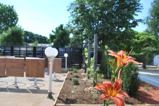 Restaurant le bourgogne auxerre cr ation du jardin - Restaurant terrasse jardin toulouse le mans ...