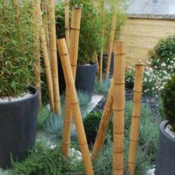 Jardin zen et jardins thématiques