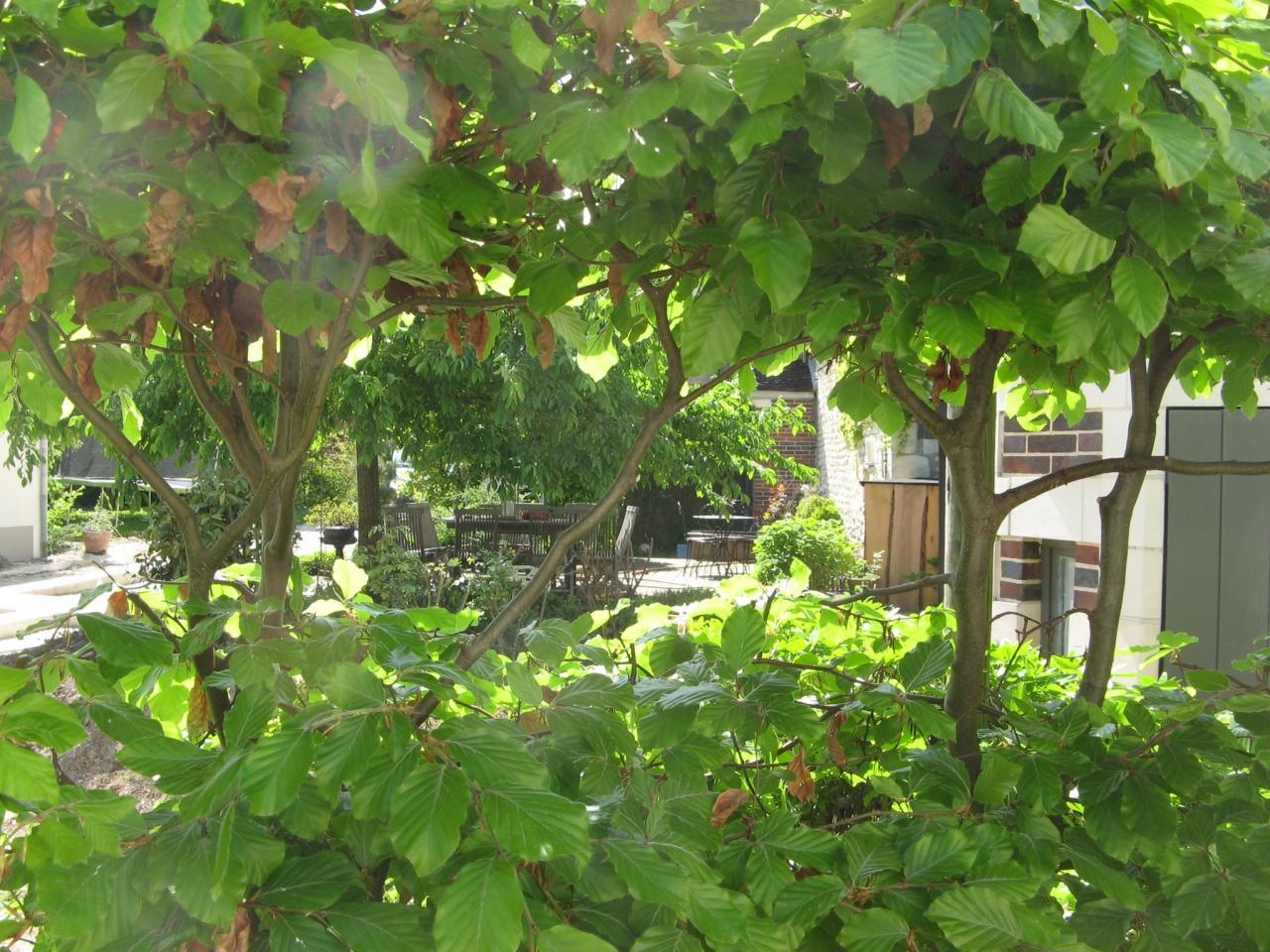 Paysagiste auxerre dans l 39 yonne 89 entretien de parcs for Entretien jardin 86