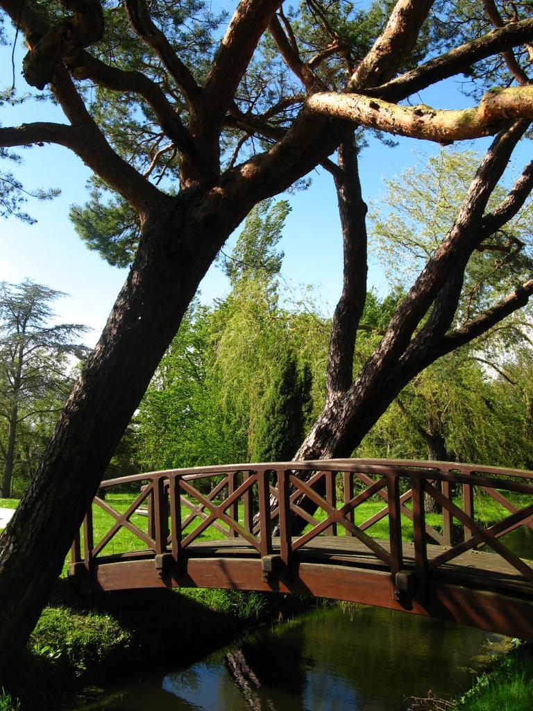 Entretien de parcs et jardins dans l'Yonne