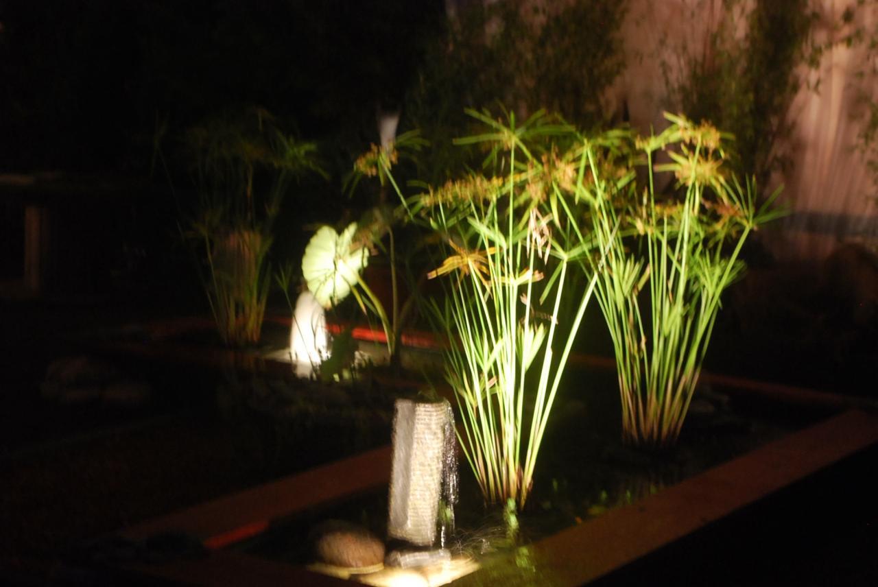 Décoration intérieure et éclairage de jardin