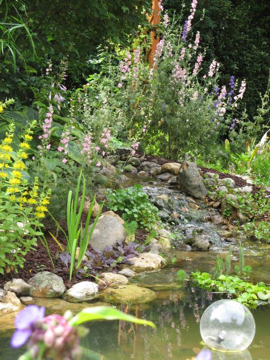 Cr ation de bassin auxerre for Creation bassin de jardin