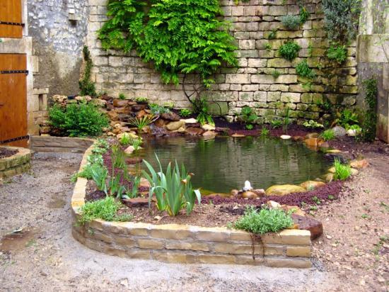 Cr ation de bassins for Creation bassin de jardin