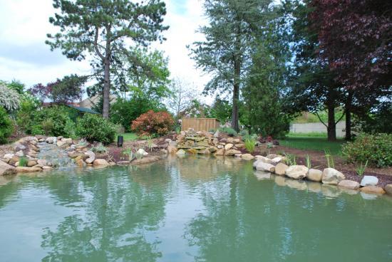 Bassin d'agrément à Auxerre dans l'Yonne