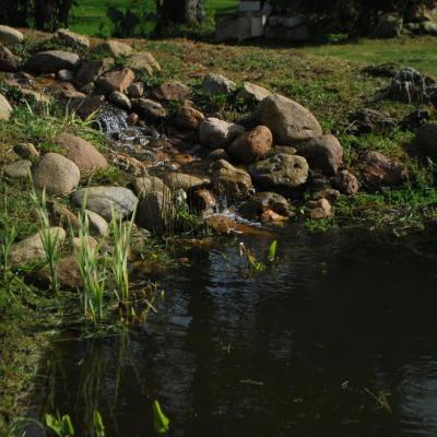 Bassin paysagé, récupération d'eau pluviale