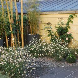 Jardin terrasse à Auxerre