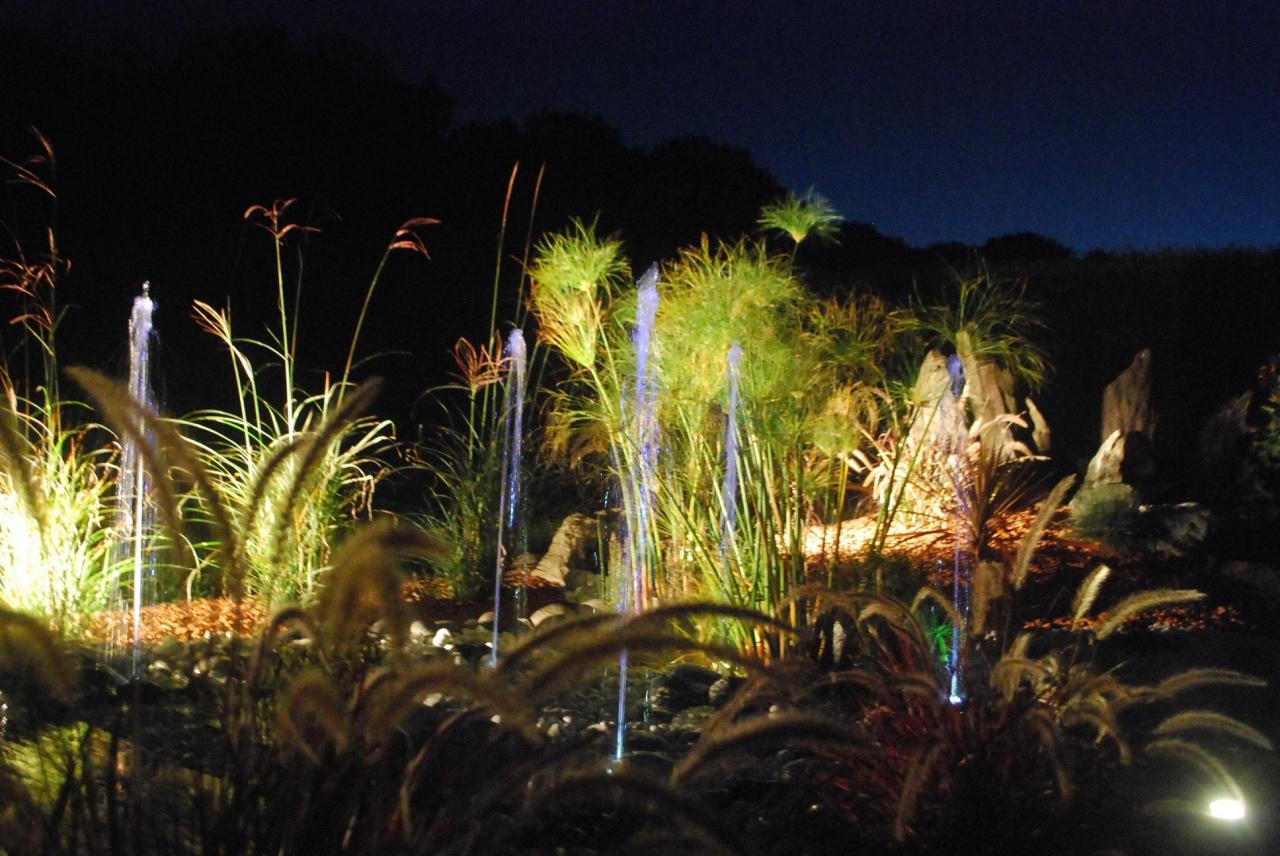 Eclairage et mise en scène de jardin