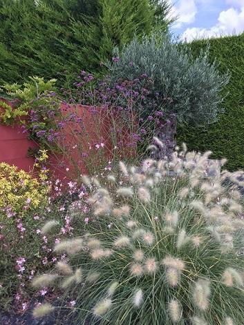Jardin en couleurs